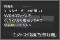 DLNAサーバー トランスコーディング視聴編